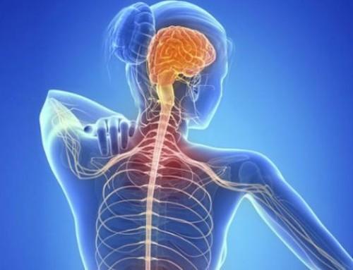 Novedades en terapia para la esclerosis múltiple, ¿cómo se pueden tratar algunos síntomas?